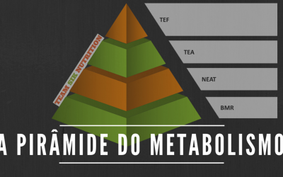 A Pirâmide do Metabolismo